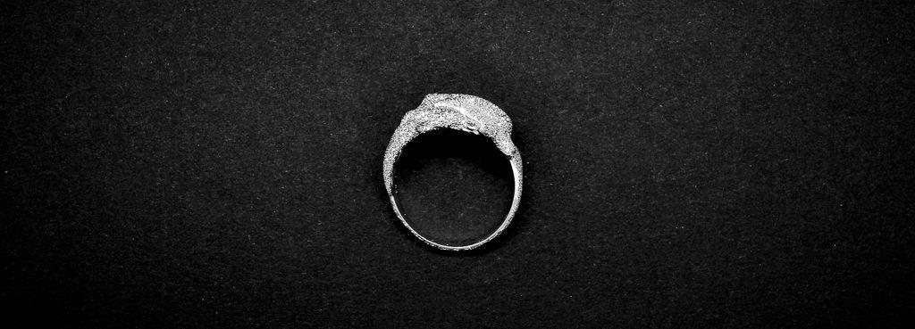 anello con delfino in argento